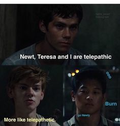 the maze runner funny - image #3696252 by winterkiss on Favim.com