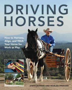 Driving Horses: How to Harness, Align, and Hitch Your Horse for Work or Play Horse Training Tips, Horse Tips, Horse Cart, Horse Harness, Harness Racing, Horse Books, Work Horses, Equestrian Outfits, Equestrian Fashion