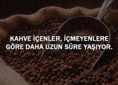 Interesting Information, Turkish Coffee, Did You Know, Fun Facts, Ankara, Istanbul, Bee, Science, Bees