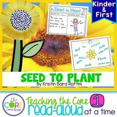 Seed to Plant: Infor