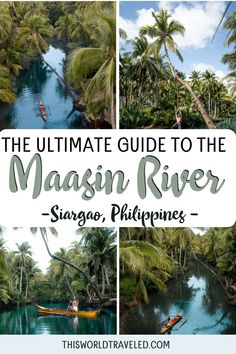 The ultimate guide to visiting the popular Maasin River palm tree swing on Siargao Island in the Philippines. Find out everything you need to know before you go, including how to get there, entrance fees, how to rent the traditional boat and more! Must see nearby spots are also included in this detailed guide about the Maasin River on Siargao island! #siargao #philippines #visitphilippines #siargaoisland Siargao Philippines, Visit Philippines, Philippines Travel, River Palm, Best Travel Guides, Travel Tips, Siargao Island, Beaches In The World, South America Travel