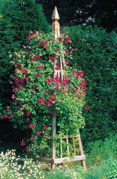 Vertical Rose Gardening DIY garden obelisk - Make your own elegant tower for your favorite climbing plants. Get our step-by-step photos Garden Archway, Tower Garden, Garden Art, Garden Design, Obelisk Trellis, Garden Trellis, Rose Trellis, Amazing Gardens, Beautiful Gardens