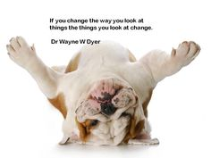 Simple but true. Often, if you change the way you look at things - the things you are looking at change. Point of view is everything!  Networking in high heels