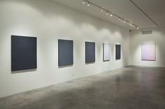 """Michael Staniak """"Image DNA"""" at Steve Turner Contemporary, Los Angeles, 2014"""