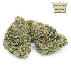 High Gardens is one of the top rated provider of online Bubba Kings The Lizard in Canada. Bubba Kings help users with full body relaxation to combat insomania and chronic pain. Cannabis Growing, Cannabis Plant, King Do, Indica Strains, Insomnia, Chronic Pain, Full Body, Spicy, Gardens