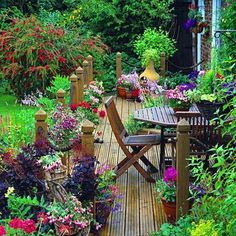 Lovely spot out on the porch and in the garden!