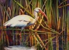 sue zimmerman watercolor art - Google Search