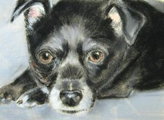 Items similar to Custom Pet Portrait, Pastel original painting of your pet, Chihuahua dog, gift, keepsake memory on Etsy Pet Portraits, French Bulldog, Original Paintings, Pastel, The Originals, Pets, Animals, Vintage, Cake