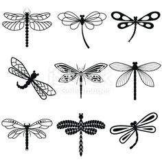 Dragonflies, black silhouettes on white background. Vector dessins de tatouage 2019 dessins de tatouage 2019 Dragonflies, black silhouettes on white background royalty free stockvectorbeelden dessins de tatouage 2019 Dragonfly Drawing, Dragonfly Art, Dragonfly Illustration, Small Dragonfly Tattoo, Dragonfly Clipart, Dragonfly Silhouette, Silhouettes, Black Silhouette, Animal Silhouette