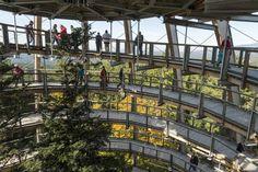 Für Naturfreunde: Naturpark Bayerischer Wald