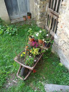 #giardino casalingo a #pigra #valle #intelvi