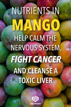 fresh florida mangoes with text - nutrients in mango help calm the nervous system, fight cancer, and cleanse a toxic liver