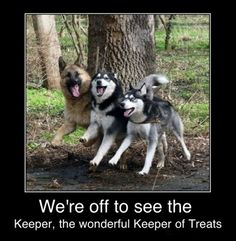 Keeper of Treats