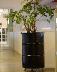 Industrial Planter 'Barrel Plant' - Industrial Planters, made out of Oil Barrels. Industrial planters, made from oil drums. Burn Barrel, Oil Barrel, Barrel Planter, Planter Pots, Outdoor Projects, Garden Projects, Garden Ideas, Home Greenhouse, Oil Drum