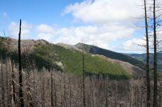 Mother Lode Loop, Northern Oregon Cascades