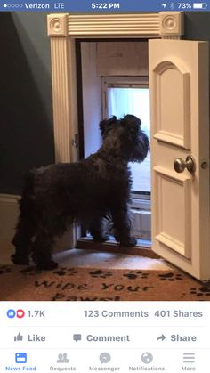 What a cute doggie door . And secure when on a vacation . Love it !!!