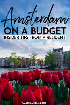 Tips for visiting Amsterdam on a budget with insider tips from a resident for visiting the Netherlands on a budget. #travel #netherlands #amsterdam #europe #budgettravel #holland
