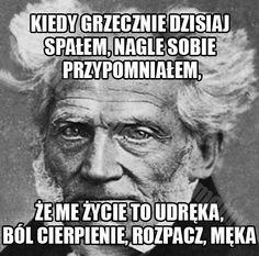 Stupid Funny Memes, Wtf Funny, Funny Cute, Really Funny, Funny Shit, Funny Stuff, Polish Memes, Weekend Humor, Depression Memes