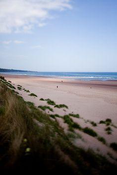 Lunan Bay / Scotland Dan Farrar
