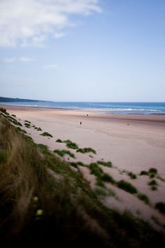 Lunan Bay / Scotland