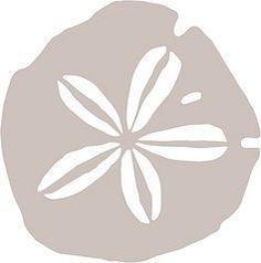 Sand dollar SVG | The Craft Crop