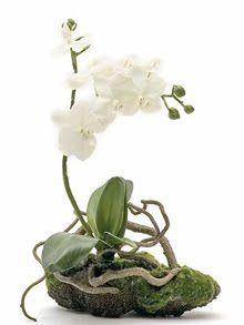 Decoración ARTICO. Ideas y Consejos con Flores y Plantas Artificiales: Orquídeas Artificiales, el centro de mesa más vanguardista