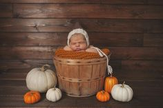 newborn, maternity family and child photographer located in castlegar bc Photographing Kids, Maternity, Pumpkin, Children, Fall, Photography, Young Children, Autumn, Photographing Boys