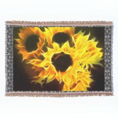 Bright yellow flowers with flame like petals against a black background.