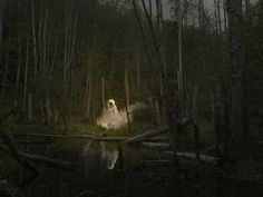Ole Marius Joergensen is a 39 year-old photographer with a background in film. He combines humour and a Norwegian strain of surrealism.