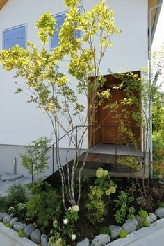 外壁 Garden Entrance, House Entrance, Japanese Plants, Pocket Garden, Beachfront House, Front Courtyard, Little Gardens, Building Exterior, Interior Garden