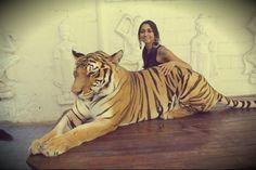 Living out my Princess Jasmine fantasies at the Tiger Zoo in Koh Samui