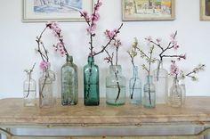 bottles as vases