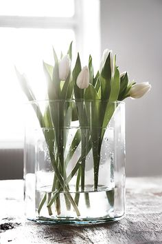 Spring flowers / White Tulips in a Double Vase Flower Power, My Flower, Fresh Flowers, Spring Flowers, Beautiful Flowers, White Tulips, White Flowers, Indoor Water Garden, Vase Arrangements