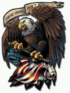 9619b27a8d02 14 Best American Pride !!!!!!! images