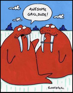 Even sea lions wear #braces! #meme www.uniteddentalgroup.com