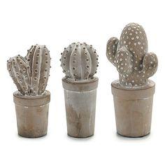 Cactus Ibergarden Stone (7 x 17 x 8 cm)