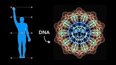 How Sacred Geometry is embedded in Your DNA | Secrets of Geometric Art