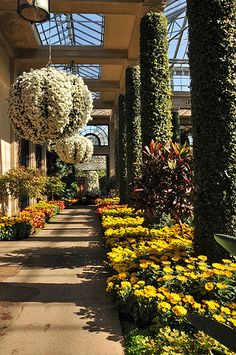 Longwood Gardens the nice thing about collecting ideas even grand ones is that you don't have to copy it, nor does it have to have the same scale just take the parts that you love and make them your own