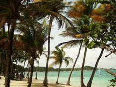 Varför resa till Guadeloupe?