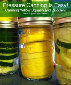Pressure Canning Squash and Zucchini