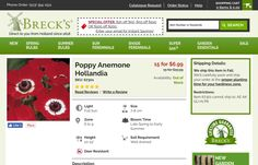 http://www.brecks.com/product/Poppy-Anemone-Hollandia/bulbs-for-southern-zones