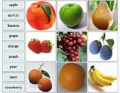 lots of interactive labeling activities. Match name to fruit or vegetables, etc and has a dictionary tab so you can learn the name in more than one language Speech Therapy Activities, Literacy Activities, Language Activities, Online Education Programs, Promethean Board, Vocabulary Games, Teacher Resources, Teaching Ideas, Cool Websites