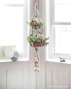 DIY Project: A Simple Hanging Succulent Garden