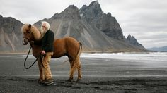 The Little Hermitage - joachimmurat: Stokksnes, Iceland. Horse Facts, Icelandic Horse, Iceland Travel, Iceland Beach, Go Outside, Vacation Spots, Mammals, Places To See, Norway