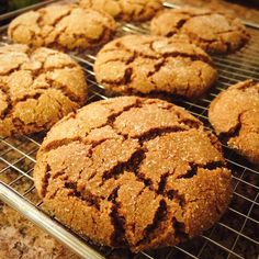 Hey, Lady Grey: Seriously, the best gingerbread cookies EVER! Ginger Bread Cookies Recipe, Ginger Molasses Cookies, Yummy Cookies, Cake Cookies, Soft Ginger Cookies, Icebox Cookies, Cookie Bars, Yummy Treats, Cookie Desserts