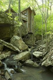 Mossy cabin.