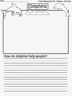 Dolphins - Research Paper Example