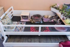 Meerschweinchen Fleecehaltung - Eine Anleitung » Anni Sophie Guinea Pig House, Pet Guinea Pigs, Rabbit Enclosure, Skinny Pig, Pets 3, Pet Cage, Diy Candles, Wooden Diy, Toddler Bed