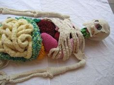 Artist Shanell Papp created this life-sized crocheted skeleton, including organs, for an open research project on textiles, anatomy and art, called BAWDY. Art Au Crochet, Knit Art, Crochet For Kids, Knit Crochet, Crochet Girls, Crochet Things, Crochet Stitch, Free Crochet, Crochet Amigurumi