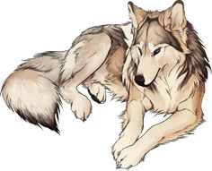 Silver. Female, no mate or pups. Brave, loyal, and quick to act if a friend is ever threatened. ( Me)